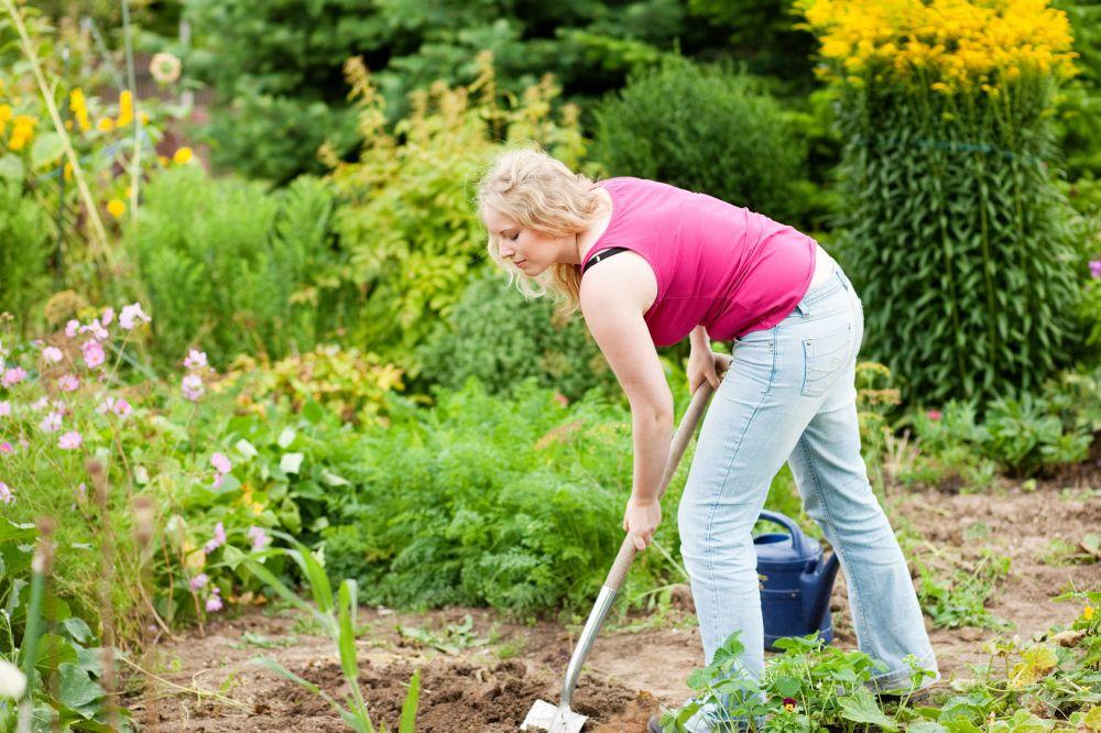 Meinen Spitz im eigenen Garten vergraben. Worauf muss ich achten?