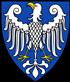 Spitz Züchter Raum Arnsberg